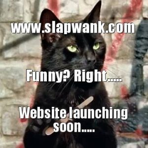 Slapwank - The best funny viral stories and memes