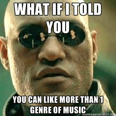 The Best Funny Music Memes of 2015
