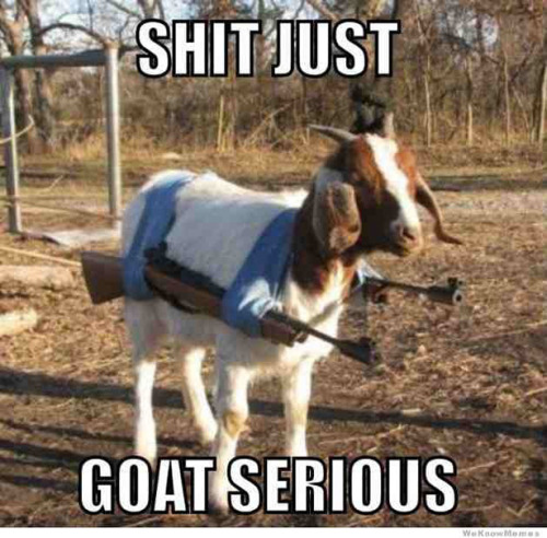 things just goat serious