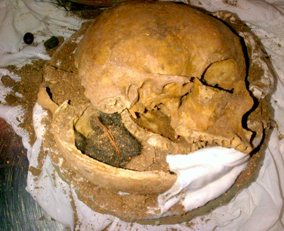 human skull fragments found at airport