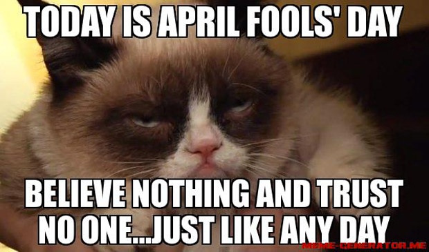 April fool day cat