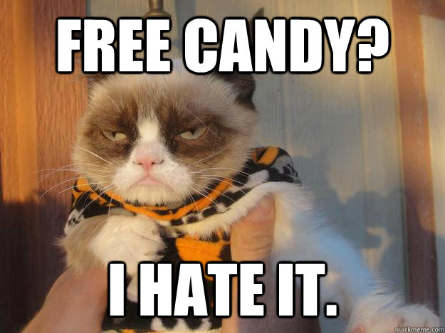 Cat Halloween memes