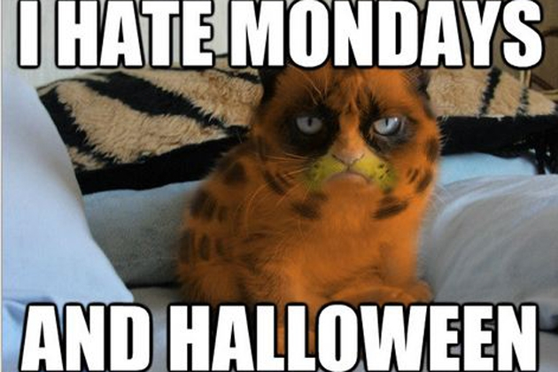 I Hate Mondays And Halloween – Miserable Cat Memes
