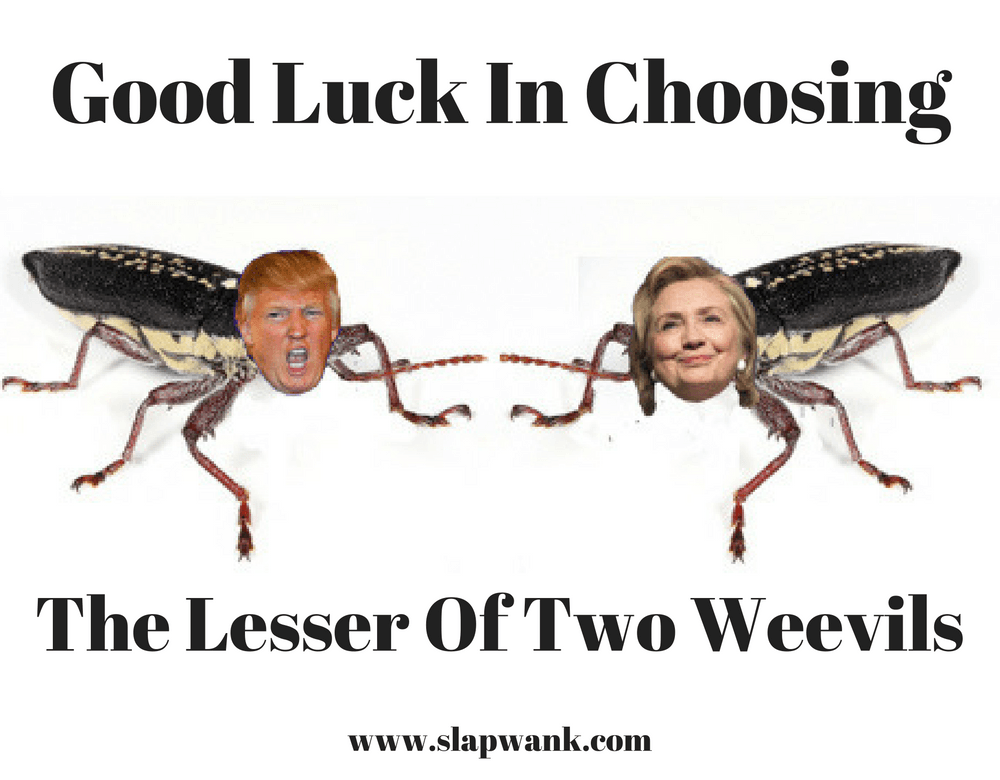 Good Luck In Choosing The Lesser Of Two Weevils!