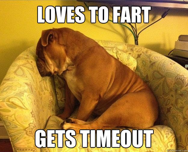 Funny Bulldog Memes