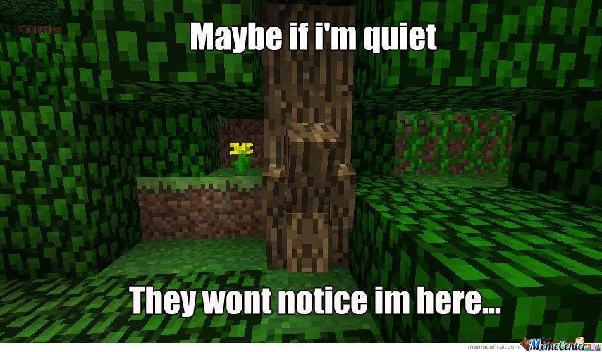Minecraft hide and seek meme