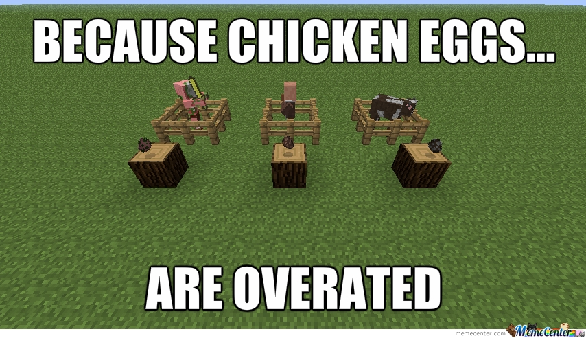 Funny Minecraft Memes with chickens