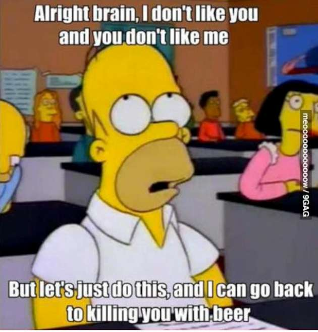 Funny Simpson Memes with Homer