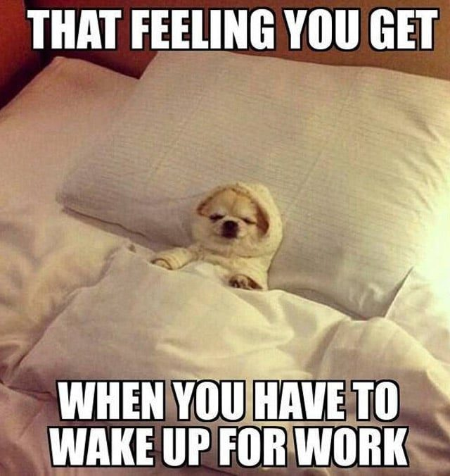 Funny work memes about going to work