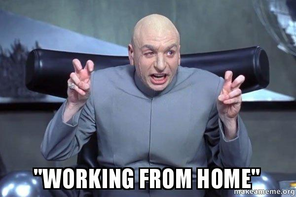 memes about working from home