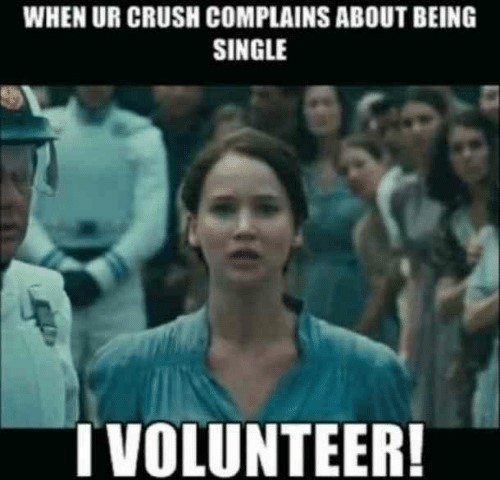 Funny Memes from Hunger games movie