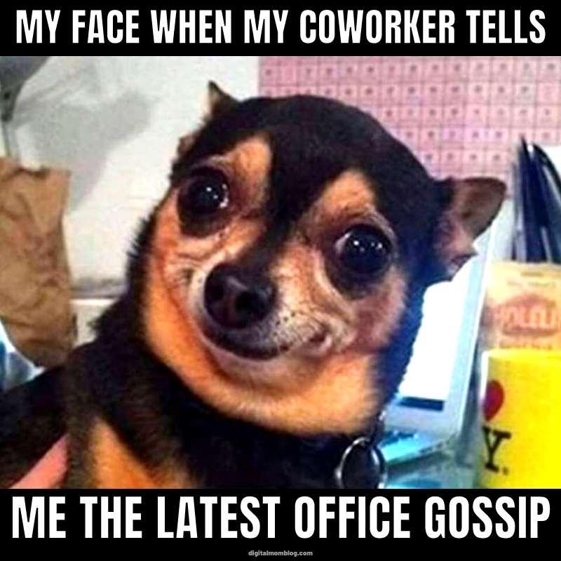 A little office gossip
