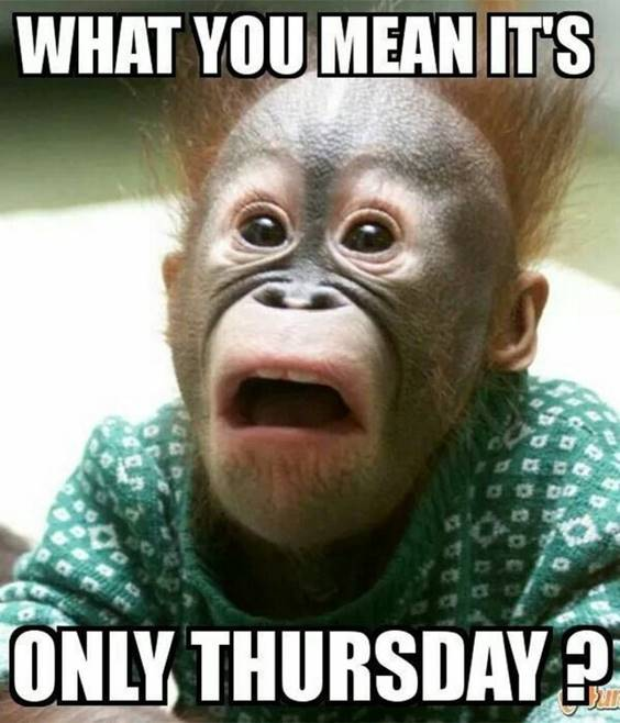 tomorrow is friday funny images
