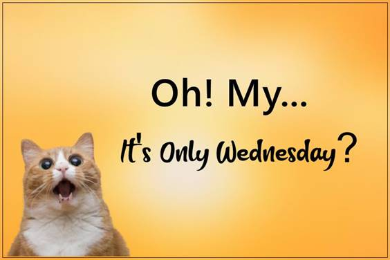 funny wednesday