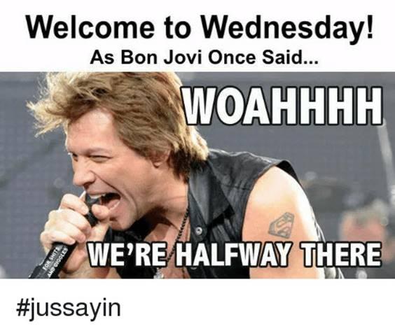happy hump day meme